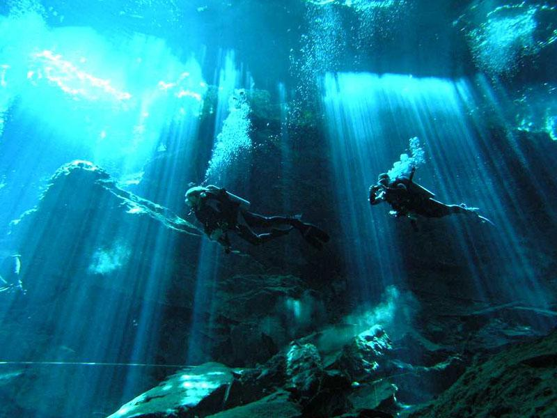 Cenote Diving Playa del Carmen