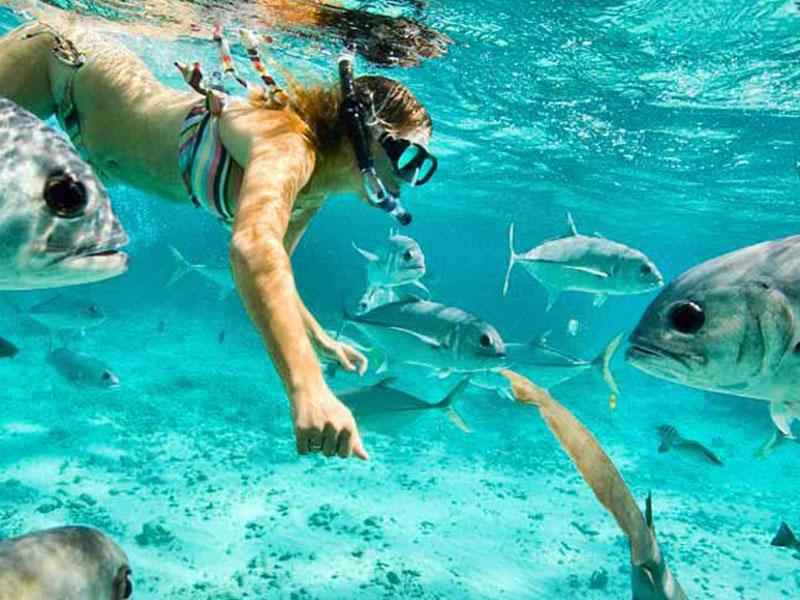 Private Tours Playa del Carmen